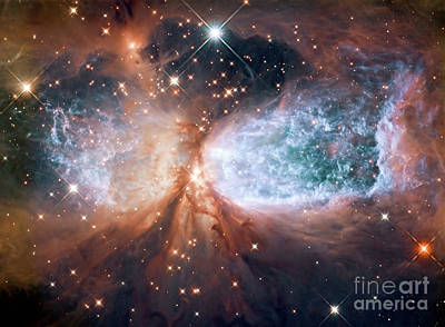 Hubble View Of Star Forming Region S106 Poster
