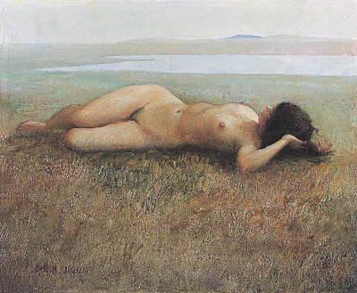 Hude On Grassland Poster