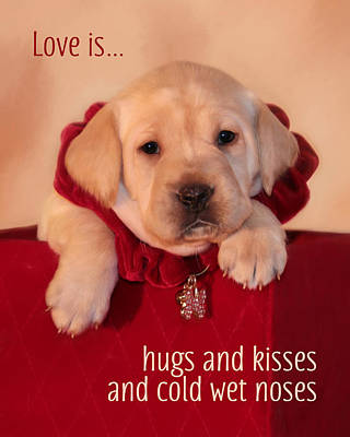 Hugs And Kisses Poster by Lori Deiter
