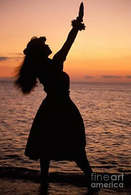 Hula At Sunset Poster by Allan Seiden - Printscapes