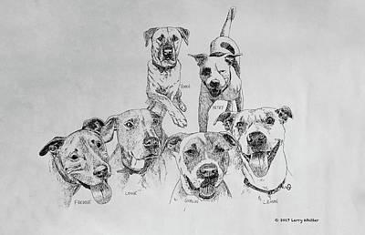 Humane Society Gang Poster