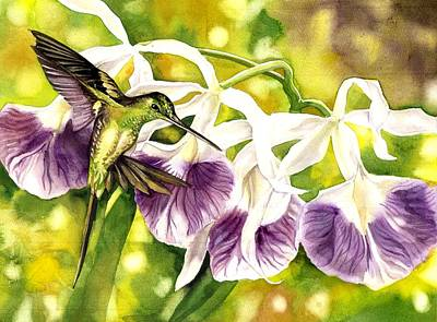 Humming Bird With Orchids Poster by Alfred Ng