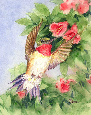 Hummingbird And Nectar Poster by Barbel Amos