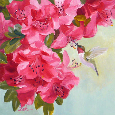 Hummingbird And Pink Azaleas Poster by Janet  Zeh