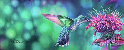 Hummingbird Poster by Anne Koivumaki - Fine Art Anne