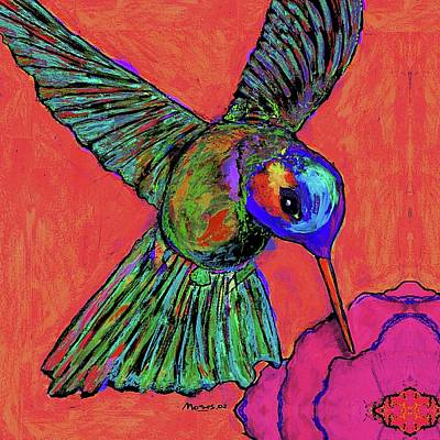 Hummingbird On Red Poster