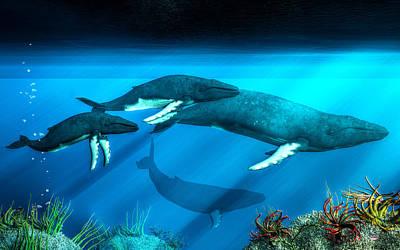 Humpback Whales Poster by Daniel Eskridge
