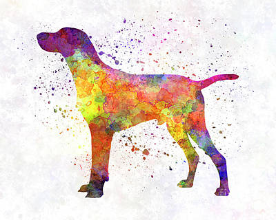Hungarian Shorthaired Pointer In Watercolor Poster