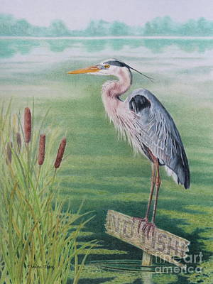 Hungry Heron Poster by Elaine Jones