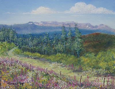 Poster featuring the painting Summer Flowers On Hungry Hill by Stanza Widen