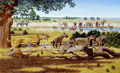 Hunting Sabre-toothed Cat Poster by Mauricio Anton