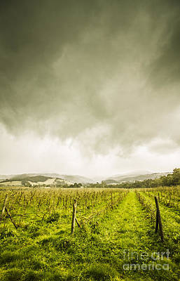 Huon Valley Apple Farm In Winter Poster by Jorgo Photography - Wall Art Gallery