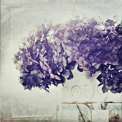 Hydrangea In Vase Poster