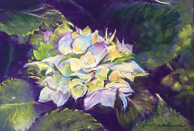Poster featuring the pastel Hydrangea by Rebecca Matthews