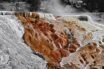 Hymen Terrace Mammoth Hot Springs Yellowstone Park Wy Poster by Christine Till
