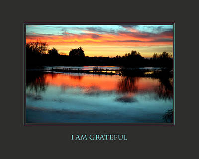 I Am Grateful Poster by Donna Corless