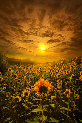 I Believe In New Beginnings Poster by Phil Koch
