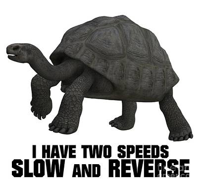 I Have Two Speeds, Slow And Reverse Poster by Esoterica Art Agency