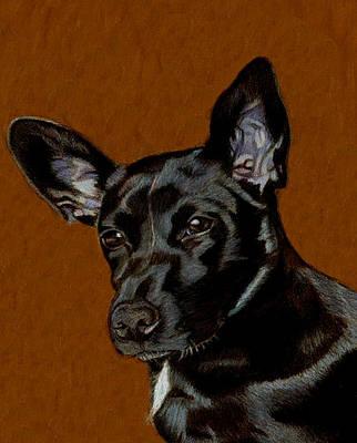 I Hear Ya - Dog Painting Poster by Patricia Barmatz