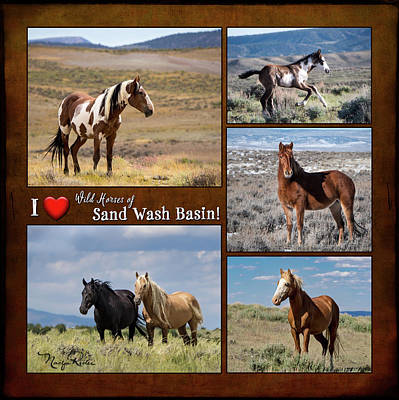 Poster featuring the photograph I Love Wild Horses Of Sand Wash Basin by Nadja Rider