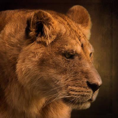 I Promise - Lion Art Poster