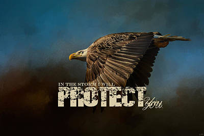 I Will Protect You - Bald Eagle Art Poster by Jai Johnson