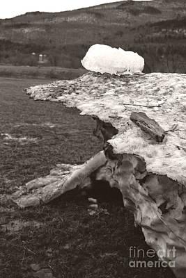 Iceberg Silo Poster