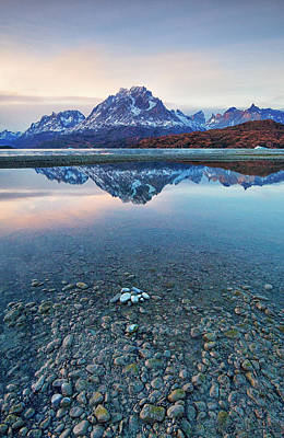 Icebergs And Mountains Of Torres Del Paine National Park Poster by Phyllis Peterson
