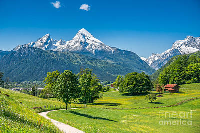 Idyllic Alpine Landscape With Meadows, Flowers And Snowy Mountains In Spring Poster by JR Photography