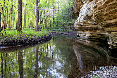 Illinois Canyon In Springstarved Rock State Park Poster