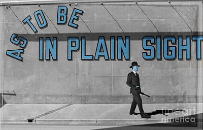 In Plain Sight Poster by Juli Scalzi