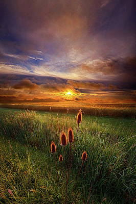 In The Eye Of The Beholder Poster by Phil Koch