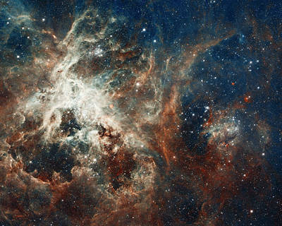 In The Heart Of The Tarantula Nebula Poster by Mark Kiver