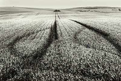 In The Moravian Fields Poster by Jenny Rainbow