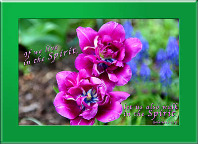 In The Spirit1 Poster by Terry Wallace