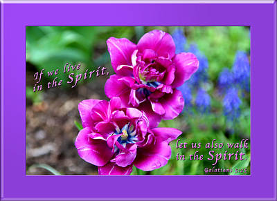 In The Spirit2 Poster by Terry Wallace