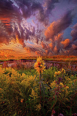 In The Warmth Of Nature's Hand Poster by Phil Koch