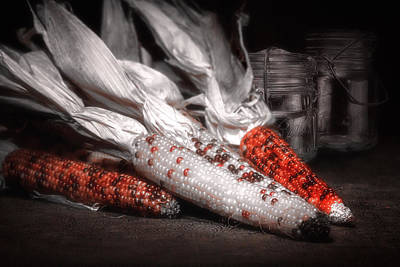 Indian Corn Still Life Poster