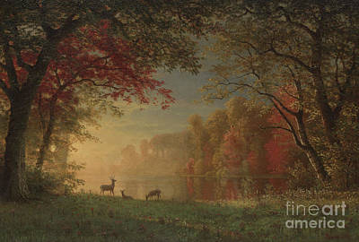 Indian Sunset Deer By A Lake Poster by Albert Bierstadt