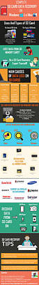 Infographic Guide On Sd Card Data Recovery Poster