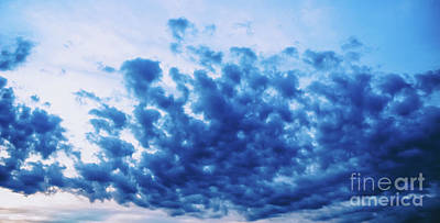 Poster featuring the photograph Ink Blot Sky by Colleen Kammerer