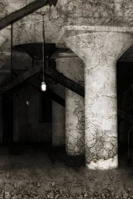 Inside Empty Dark Building With Light Bulbs Lit Poster by Gothicrow Images