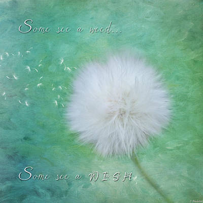 Inspirational Art - Some See A Wish Poster by Jordan Blackstone