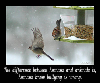 Inspirational-the Difference Between Humans And Animals Is, Humans Know That Bullying Is Wrong. Poster