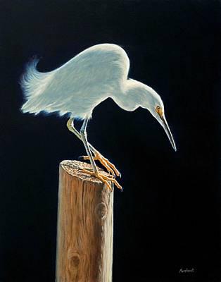 Interlude - Snowy Egret Poster