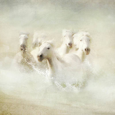 Into The Mist Poster by Karen Lynch