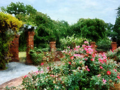 Into The Rose Garden Poster by Susan Savad