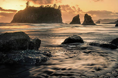 Poster featuring the photograph Into The Sea - Ruby Beach by Expressive Landscapes Fine Art Photography by Thom