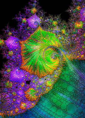 Investigating Fractals Two Poster by Mo Barton
