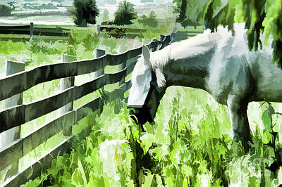 Poster featuring the digital art Iowa Farm Pasture And White Horse by Wilma Birdwell
